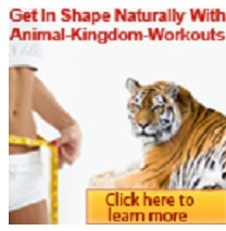 Animal Kingdom Workouts