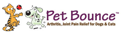 Click Here to Find Pet Joint Pain Relief for Cats and Dogs