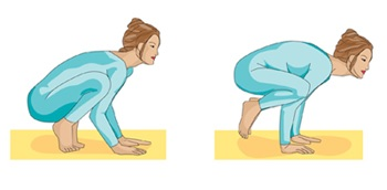 crane pose or crow pose illustrated